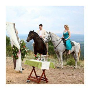 Geweldige bruiloft in Zuid-Afrika op, naast of met paarden