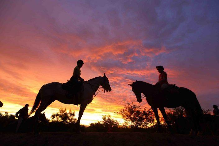 Bruiloft te paard