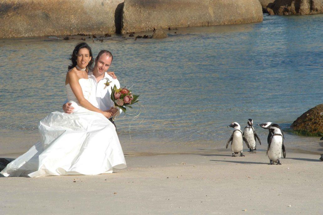 Trouwen op Boulders beach met ook nog pinguins op het strand bij Kaapstad