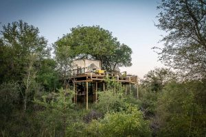 Trouwlocaties op Safari: Garonga3