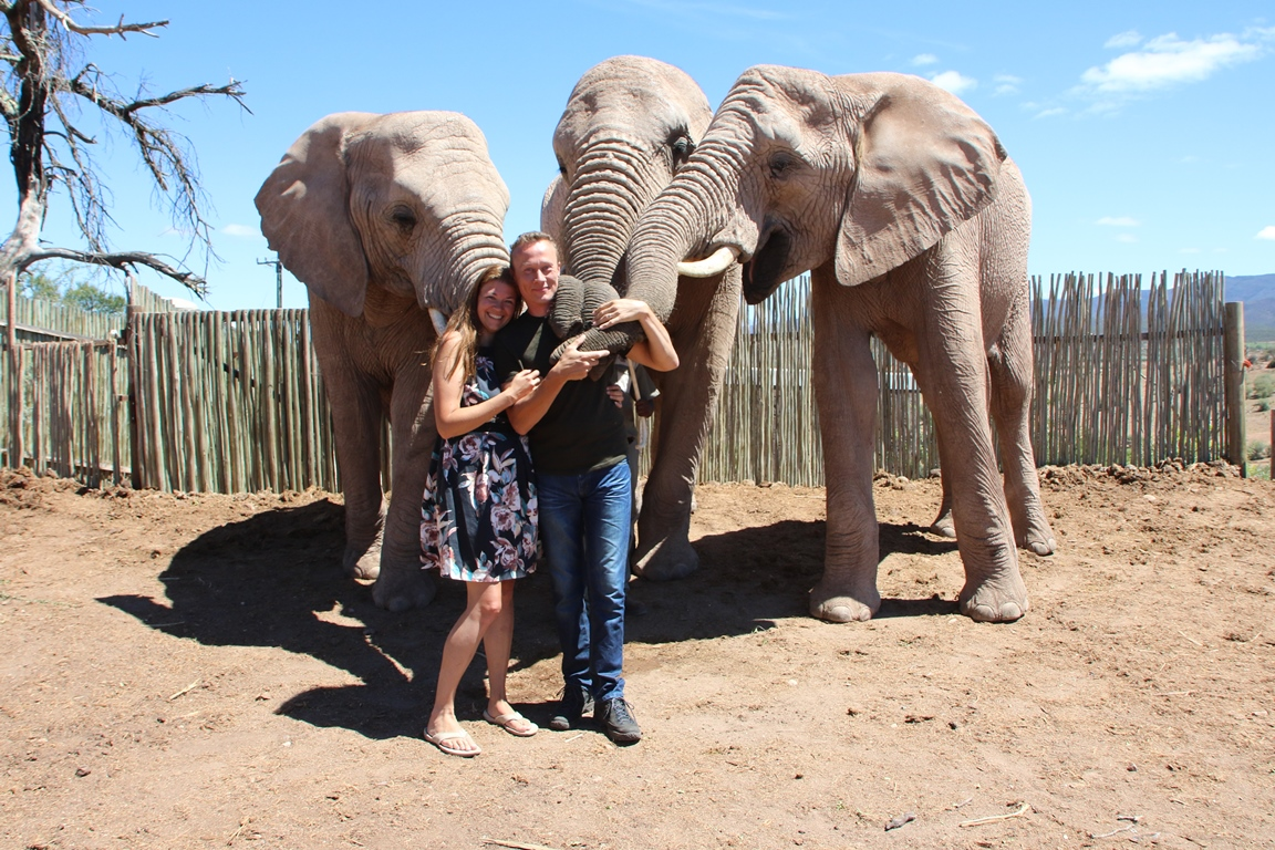 Olifanten interactie: samen op de foto