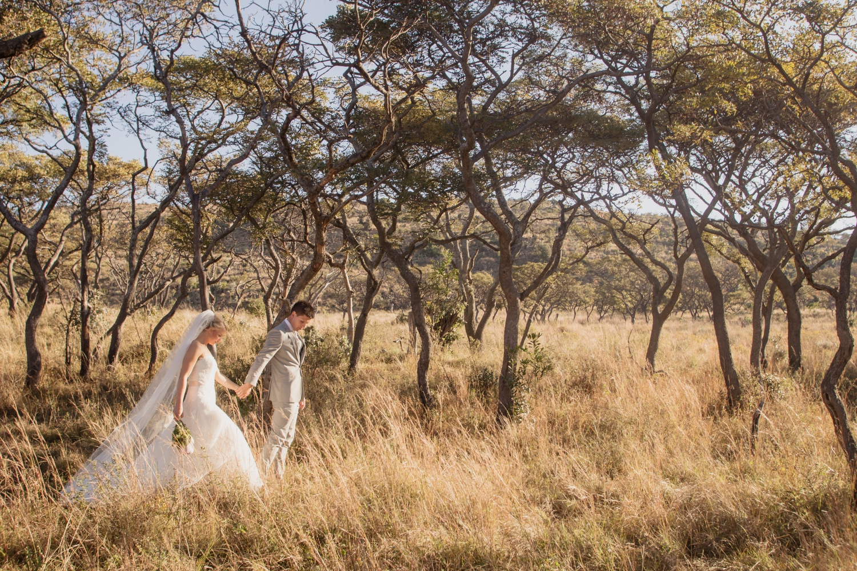 Safaribruiloft