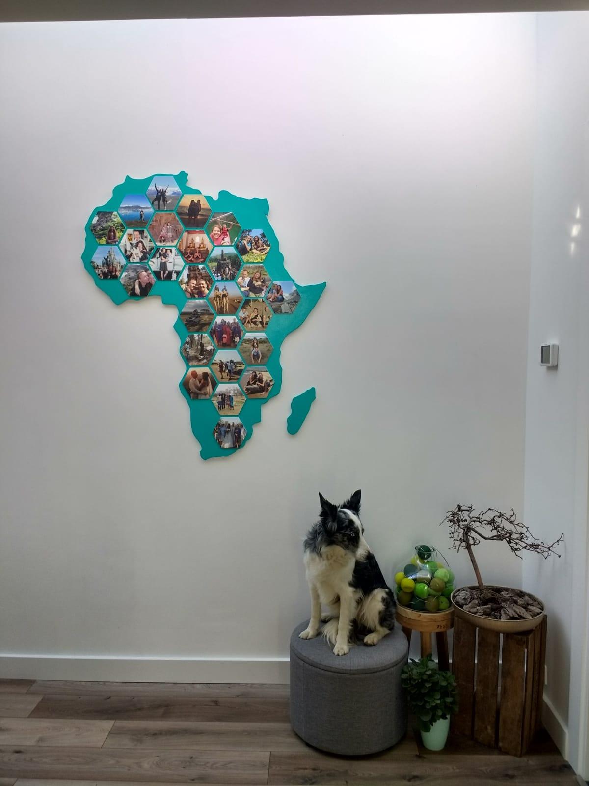 foto's op hexagons aan de muur